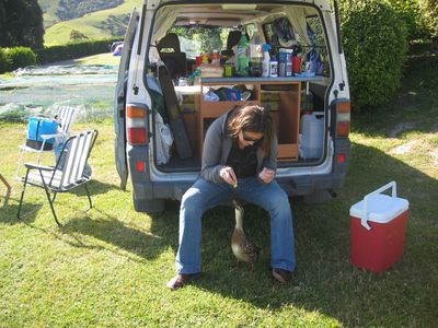 Vic feeds a duck at the campsite in Akaroa